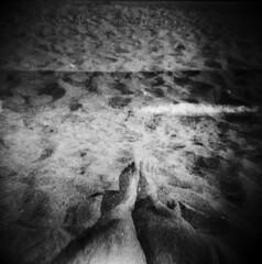 (Victoria Yarlikova) Tags: monochrome 6x6 film 120mm mediumformat scan scanfromnegative blackandwhite multiexposure iso200 fomapan epsonperfectionv700 analog analogue beach holga120n toycamera lomo plasticlens holga experimental