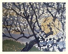 Plum (Japanese Flower and Bird Art) Tags: flower plum prunus mume rosaceae masao ido modern woodblock print japan japanese art readercollection