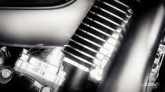 Harley #524 (dougkuony) Tags: hdr harleydavidson bw bike blackwhite blackandwhite mono monochrome motorcycle