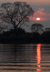 Just A Sunset (AnyMotion) Tags: sunset sky tree silhouette sonnenuntergang baum travel brazil reflection southamerica river himmel brasilien fluss spiegelung matogrosso pantanal 2019 südamerika anymotion riosararé nature reisen natur 7d2 canoneos7dmarkii américadosul ngc npc