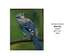 "Blue Jay • <a style=""font-size:0.8em;"" href=""http://www.flickr.com/photos/124378531@N04/48827148868/"" target=""_blank"">View on Flickr</a>"