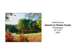 "Autumn in Charles County • <a style=""font-size:0.8em;"" href=""http://www.flickr.com/photos/124378531@N04/48827149128/"" target=""_blank"">View on Flickr</a>"