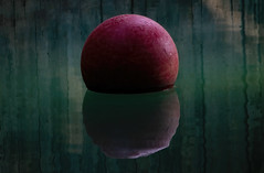 Ball and reflections (Millie Cruz (On and Off)) Tags: toy water reflection ball red rubber zoo tiger nationalzoo washingtondc cmwd cmwdred minimalism canoneosrebelt6i ef70300mmf456isiiusm milliecruz