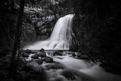 Gollinger Wasserfall (Rene Wieland) Tags: waterfall wasserfall longexposure nature ntur bnw bw blackandwhite water rocks river flow alps alpen alpine salzburg moody pure natur beautyofnature