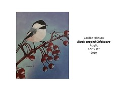"""Black-capped Chickadee • <a style=""""font-size:0.8em;"""" href=""""http://www.flickr.com/photos/124378531@N04/48827682587/"""" target=""""_blank"""">View on Flickr</a>"""
