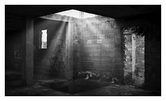 Llum a les runes (Vicent Granell) Tags: granellretratscanon mirada visió composició percepció personal bn bw llum ombres