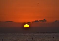 Sunrise on the beach of El Campello (En memoria de Zarpazos, mi valiente y mimoso tigre) Tags: sunrise alba amanecer beach spiaggia playa sea mare mar seascape paisajemarino sun sole sol skyfire skyred cielorosso cielorojo playadeelcampello campello alicante