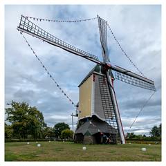 Aurora molen, Baexem (Paulemans) Tags: sony281635zassm paulemans paulderoode aurora baexem windmolen windmill variosonnart281635 variosonnar163528za