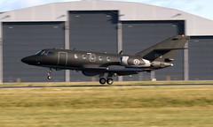 RNoAF 053 Munin OSL ENGM Gardermoen (Inger Bjørndal Foss) Tags: 053 053munin rnoaf dassault falcon osl engm gardermoen