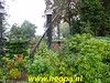 "2019-09-29    Tocht om de   Noord 2e dag    42 Km  (88) • <a style=""font-size:0.8em;"" href=""http://www.flickr.com/photos/118469228@N03/48827891363/"" target=""_blank"">View on Flickr</a>"