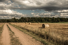 After the harvest (Piotr_PopUp) Tags: biebrza biebrzańskiparknarodowy podlasie harvest field rural village road dustroad poland polska europe travel summer straw countryside