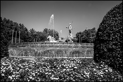 NEPTUNE FOUNTAIN  -  MADRID (J.P.B) Tags: madrid neptunefountain fuentedeneptuno joséguerra venturarodríguez juanpascualdemena joséarias josérodríguez pablodelacerda cánovasdelcastillo fontaine monument sculpture néoclassicisme plazadecánovasdelcastillo placecánovasdelcastillo cánovasdelcastillosquare fountain spain fuente españa マドリード 马德里 мадрид