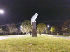 The Owl Statue on Wednesday morning (garydlum) Tags: owlstatue publicart canberra australiancapitalterritory australia