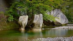 RM-2019-365-274 (markus.rohrbach) Tags: natur landschaft wasser gewässer fluss sense pflanze baum gestein stein fels