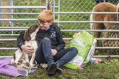 Dog lover at the horse fair (Frank Fullard) Tags: frankfullard fullard candid street portrait ballinasloe horse pony dog fair galway irish ireland tradition color colour heritage redhead red hair kiss love pet puppy communication communicating nose