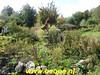 "2019-09-28     Tocht om de  Noord 25 km  (112) • <a style=""font-size:0.8em;"" href=""http://www.flickr.com/photos/118469228@N03/48828261652/"" target=""_blank"">View on Flickr</a>"
