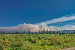 2019_Dempster Highway_forest fire (Joachim Spenrath Münster, Germany) Tags: forestfire fire yukon canada dempsterhighway forest north summer waldbrand wald norden sky cloudy smoke rauch permafrost