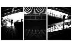 The Blackfriars collection (paulbnashphotography (ARPS)) Tags: street streetphotography streetphoto streetlife urban urbanphotography blackandwhite blackandwhitephotography blackandwhitephoto whiteandblack whiteandblackphotography whiteandblackphoto london londonbaby londonphoto londoncitycapital londoncity londonstreetphotography highcontrast highcontraststreetphotography highcontraststreet set collection collections three threesome triptych pictasstreet vero verosstreet