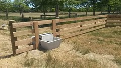 Proper Pipe Laying and Trough Installation (stevebrownruralcontracting) Tags: pipe irrigation trough