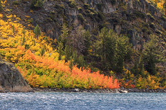 Divine Fall Colors (Lisa Roeder) Tags: bishop lakesabrina mountainlakes nature easternsierras