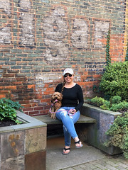 Crazy Dog Lady (tquist24) Tags: cavapoo goshen hww indiana outdoor sicily wanda brick bricks city cute dog girl outside portrait pretty smile sunglasses urban woman iphone iphonex cellphone bench