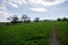 Photo of Muiravonside Country Park