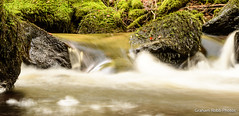 Inchewan (grahamrobb888) Tags: grahamrobbphotos autumn forest woods woodland woodsandstream scotland birnamwood birnam nikon nikkor nikond500 d500 50mm 50mmf18 stream water waterspray waterfall longexposure relaxed