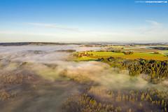 Allgäu im Morgennebel (PADDYSCHMITT.DE) Tags: allgäu wurzacherried ried moorgebiet badwurzach nebel morgennebel alpen bäume wald naturschutzgebiet
