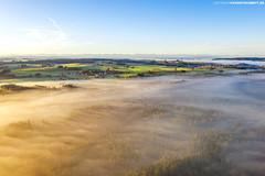 Wolkenmeer über dem Wurzacher Ried #2 (PADDYSCHMITT.DE) Tags: allgäu wurzacherried ried moorgebiet badwurzach nebel morgennebel alpen bäume wald naturschutzgebiet