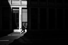 slice of light (gato-gato-gato) Tags: apsc fuji fujifilmx100f street streetphotographer x100f autofocus flickr gatogatogato pocketcam pointandshoot streetphoto streetpic wwwgatogatogatoch