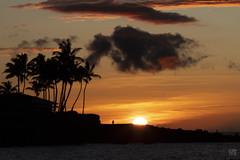 Sunset at Eva Parker Woods Cottage 3 (lycheng99) Tags: evaparkerwoodscottage sunset hawaii bigisland clouds sun colorfulsky sky color palmtree coast pacificocean shoreline landscape nature travel explore visithawaii