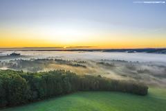 Sonnenaufgang über dem Wurzacher Ried (PADDYSCHMITT.DE) Tags: allgäu wurzacherried ried moorgebiet badwurzach nebel morgennebel alpen bäume wald naturschutzgebiet