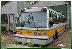 "TMC RTS (1989)  ""MBTA"" (uslovig) Tags: tmc rts 1989 massachusetts bay transportation authority 8903 mbta kennebunkport seashore trolley museum maine me usa america amerika bus coach busse buses"
