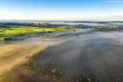 Wolkenmeer über dem Wurzacher Ried #1 (PADDYSCHMITT.DE) Tags: allgäu wurzacherried ried moorgebiet badwurzach nebel morgennebel alpen bäume wald naturschutzgebiet