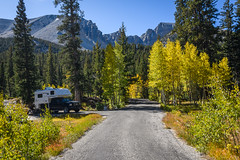 Wheeler Peak Campground (Jeff Sullivan (www.JeffSullivanPhotography.com)) Tags: greatbasinnationalparkbakereasternnevadausaamericansout fall colors great basin national park baker eastern nevada usa american southwest landscape nature travel photography nikon d850 nikkor 1735mm lens photo copyright jeff sullivan 2019 september