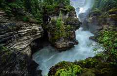 Jasper National Park, Alberta, Canada (Paul Rescigno) Tags: athabascafalls athabasca falls waterfalls jasper jaspernationapark nationalparks icefieldparkway canada alberta river mountains rockymountains canadianrockies