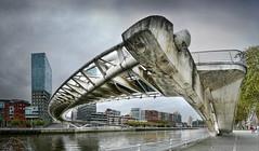 Puente Zubizuri, Bilbao (puma3023) Tags: puente zubizuri bilbao agua ria digitalcameraclub