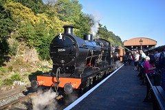 30541 (Chris Strange) Tags: svr severn valley railway autumn steam gala gwr br sr southern great western british heritage train kidderminster bridgnorth bewdley arley hampton loade highley 30541 maunsell q class