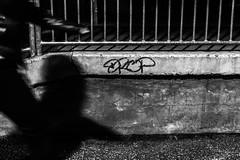 Comment pouvez-vous être si sûr d'avoir raison ? Pourquoi vos certitudes seraient plus vraies que les miennes ? Même mon ombre se trompe parfois, alors pourquoi pas vous ? [Explored 2019 October 2nd] (LACPIXEL) Tags: certifude incertitude uncertainty doubt incertidumbre certidumbre certainty certeza ombre shadow sombre personne people gente noiretblanc blancoynegro blackwhite rue street calle sony flickr lacpixel