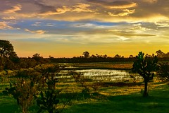 Sunrise in summer time (FVillalpando) Tags: light sky water clouds sunrise pond colours land semiarid nature ngysaex ngysa