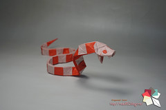 Snake (Rydos) Tags: paper origami art hanji koreanpaper korean origamist koreanorigamist paperfold fold folding paperfolding designed design model papermodel korea origamilst gen hagiwara snake red genhagiwara bamn