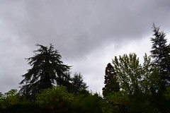 Durango (eitb.eus) Tags: eitbcom 35411 g1 tiemponaturaleza tiempon2019 otono bizkaia durango javierlanazuñiga