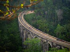 Nine Arch Bridge Ella (TeunJanssen) Tags: ella train bridge arch ninearchesbridge sof nature landscape transport rail m43 omdem10 omd olympus srilanka trave travel traveling worldtravel backpacking jungle forest