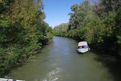 IMGP6768 (Alvier) Tags: rumänien donau donaudelta natur vögel fluss strom delta schiff schifffahrt donaufahrt