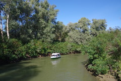 IMGP6769 (Alvier) Tags: rumänien donau donaudelta natur vögel fluss strom delta schiff schifffahrt donaufahrt