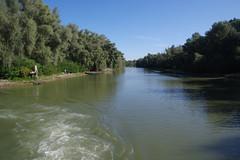 IMGP6770 (Alvier) Tags: rumänien donau donaudelta natur vögel fluss strom delta schiff schifffahrt donaufahrt