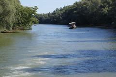 IMGP6774 (Alvier) Tags: rumänien natur delta vögel fluss schiff strom donau schifffahrt donaudelta donaufahrt