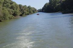 IMGP6781 (Alvier) Tags: rumänien donau donaudelta natur vögel fluss strom delta schiff schifffahrt donaufahrt