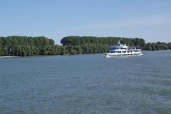 IMGP6782 (Alvier) Tags: rumänien donau donaudelta natur vögel fluss strom delta schiff schifffahrt donaufahrt