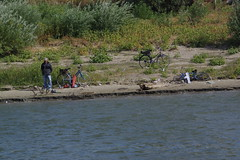 IMGP6796 (Alvier) Tags: rumänien donau donaudelta natur vögel fluss strom delta schiff schifffahrt donaufahrt